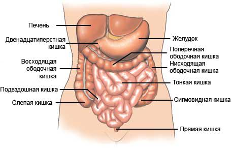 признаки вирусной инфекции лечение