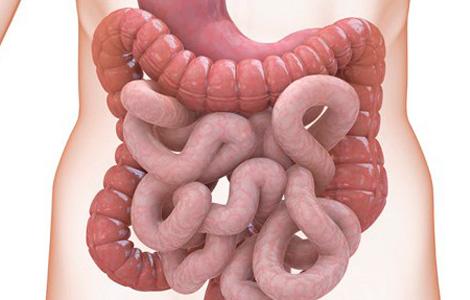 При заболевании в органе появляются разрывы