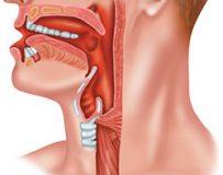 Развитие и стадии рака пищевода