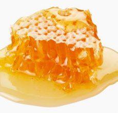 Эффективное лечение желудка алоэ и медом