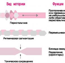 Средства улучшения перистальтики кишечника