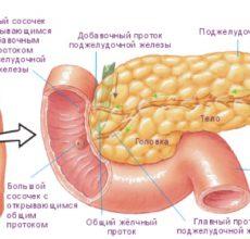 Что представляет из себя паренхиматозный панкреатит?