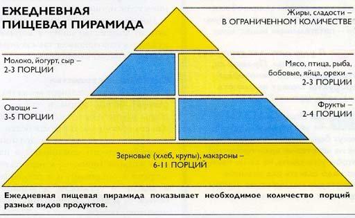Ежедневная пищевая пирамида