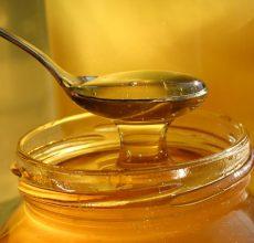 Польза и вред меда при панкреатите