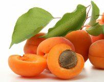 Можно ли есть абрикосы при панкреатите?