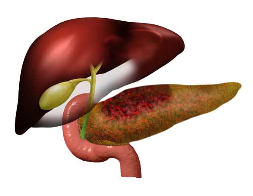 Можно ли есть клубнику при панкреатите?