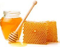 Чем поможет мед при гастрите желудка?