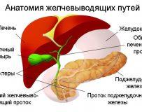 Соблюдение диеты при заболеваниях желчного пузыря