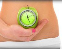 Время переваривания пищи в желудке человека