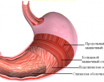 Способы уменьшения растянутого желудка