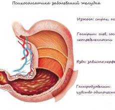 Связь между психосоматикой и желудком