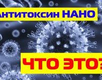 Какие противопоказания для Антитоксина Нано?