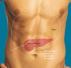 Причины увеличения поджелудочной железы