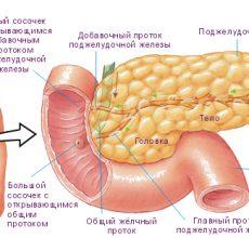 Основные симптомы проблем с поджелудочной железой