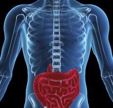 Выбор процедуры — МРТ кишечника или колоноскопия, что лучше?