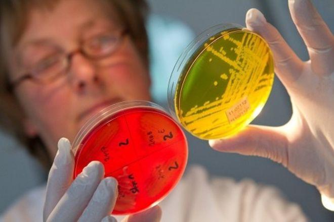 Как отличить кишечную инфекцию от отравления?