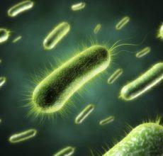 Применение антибиотиков при кишечной инфекции у детей