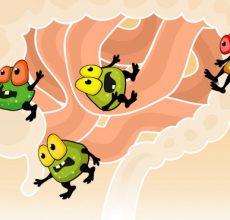 Восстановление микрофлоры кишечника после применения антибиотиков