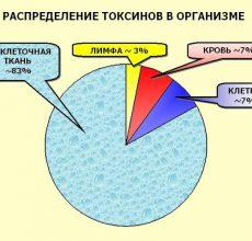 Информация с официального сайта Токсорбина