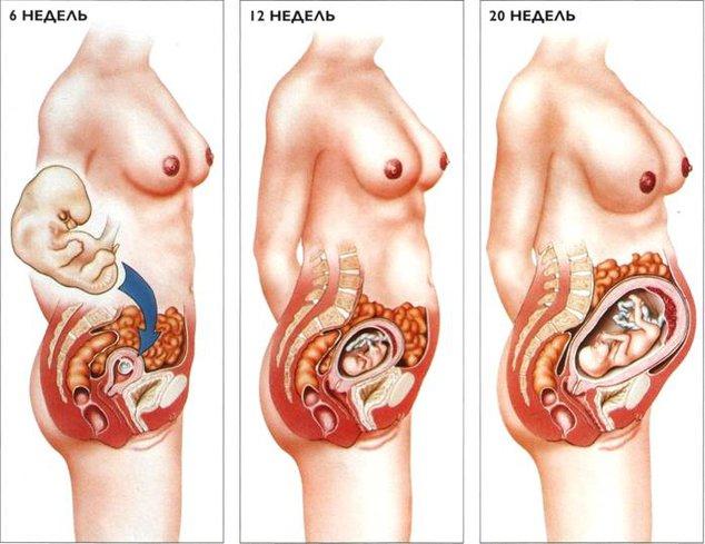 Народные средства от изжоги при беременности: эффективные способы
