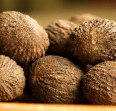 Применение черного ореха от паразитов