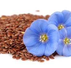 Использование семени льна при запорах