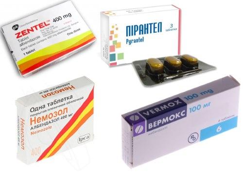 Популярные лекарства от гельминтов