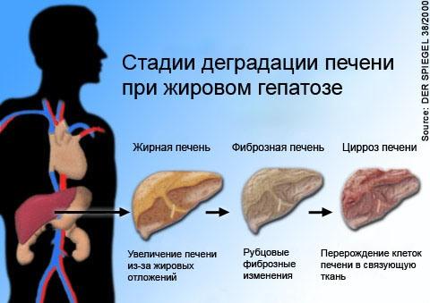 Обязательное биохимическое исследование крови при хроническом гепатите