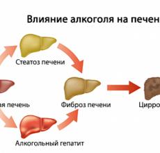 Как можно очистить печень от алкоголя?