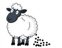 Форма запора — овечий кал у человека